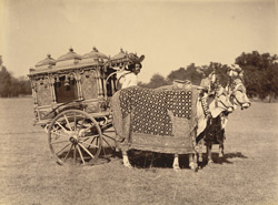 Silver Zenana carriage [Vadodara] 4302473
